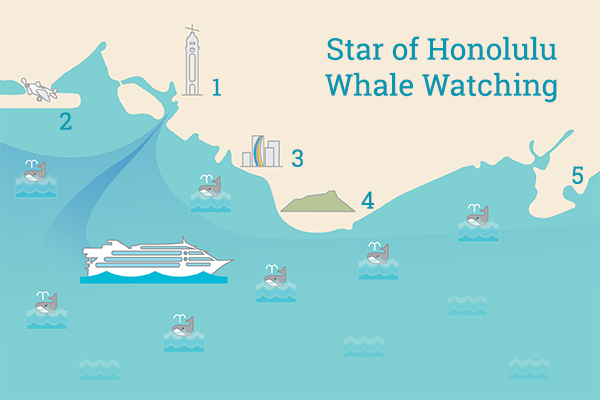 Whale-Watch-Cruise-Route